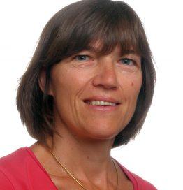 Prof. Sabine Van Huffel